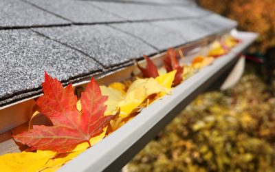 Importance of Keeping Your Gutters Clean